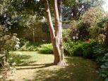 immobilière - maison à vendre - tourisme -  Ref : 113001/jardin1