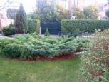 immobilier - location saisonnière - gites -  Ref : 173001/jardin