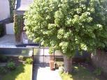 dinard - location - dinard -  Ref : 185001/jardin