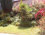 vacance - immobilier - location saisonnière -  Ref : 219001/jardin