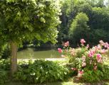 vacance -  vacance - immobilier -  Ref : 252001/jardin10