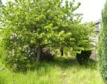 immobilière -  Yves de Sagazan -  Yves de Sagazan -  Ref : 257001/jardin2